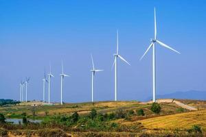 Wind turbines line a field