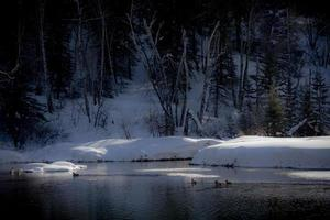 Snow covered lake