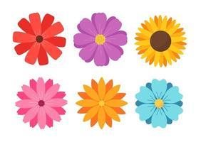 conjunto de flores de colores vector