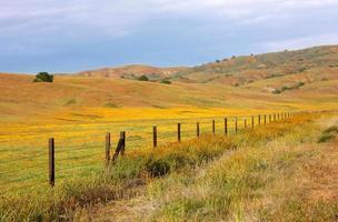 California Valley photo