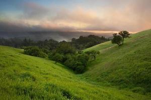 anochecer en un exuberante valle foto