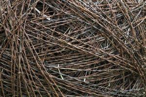roll of barbed wire closeup photo