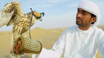 Hooded Falcon Balanced Arabic Male Falconers Glove