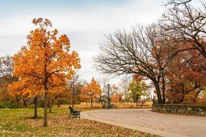 parque minnehaha durante el otoño foto