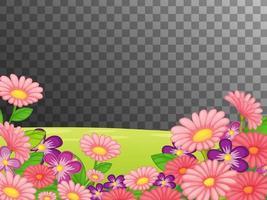 campo de flores rosadas sobre fondo transparente vector