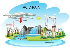 Diagrama que muestra la vía de la lluvia ácida sobre fondo blanco.