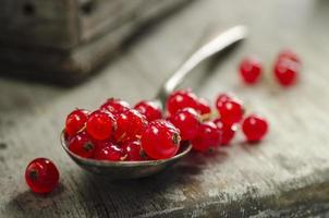 Redcurrants on a spoon photo