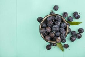 Dark berries on a blue background with copy space