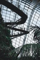 Shanghai, China, 2020 - Looking up in a greenhouse