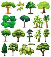 Set of variety of trees