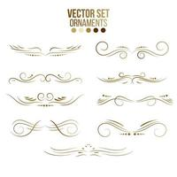 Gold lines and ornaments collection vector