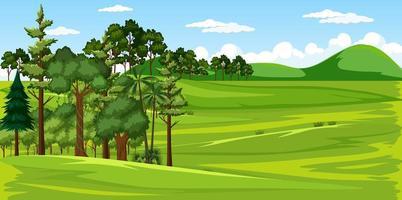 escena del paisaje de la naturaleza del prado verde en blanco