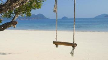 balanço pendurado em grande árvore sobre o mar da praia