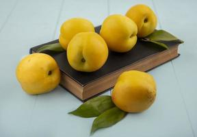 Top view of fresh yellow peaches isolated on a blue background