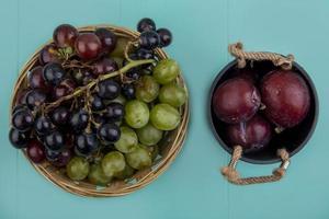 Vista superior de las uvas en la canasta y tazón de pluots sobre fondo azul.