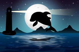 Dolphin in nature night scene silhouette vector
