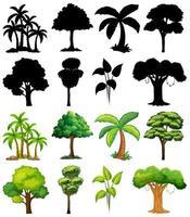 conjunto de planta y árbol con su silueta vector