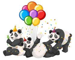 Panda grupo en tema de fiesta aislado sobre fondo blanco.