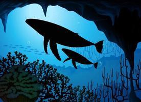 ballena jorobada en la naturaleza escena silueta vector
