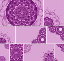 Beautiful fuchsia color mandala background set vector