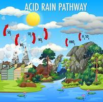 diagrama que muestra la lluvia ácida