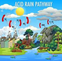 Diagram showing acid rain