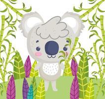 pequeño koala dibujos animados follaje hojas botánico