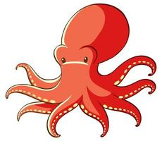 Red octopus on white background vector
