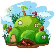 tema de jardinería con insectos en su hogar.