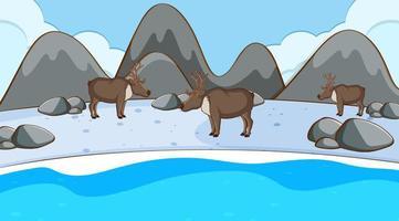 Scene with reindeers in winter