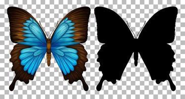 mariposa azul y su silueta vector