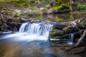Small waterfall on creek flowing over the rocks and wood photo