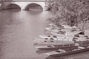 Punts on River Carn, Cambridge