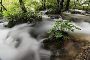 Die Plitvicer Seen und Wasserfälle in Kroatien