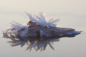 milagro de cristal de hielo foto