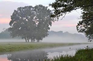 amanecer con niebla de la mañana. foto