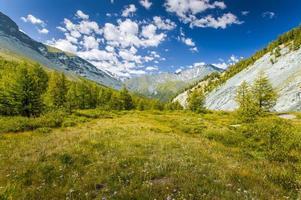 Altay Altai the way Beluha photo