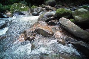 Countryside River Stream in the Forrest photo