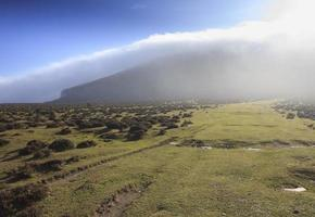 fog and sun in the plains