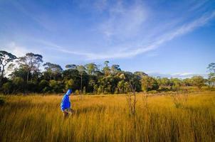 Man walking in summer field photo