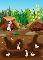 Underground animal hole with many white rabbits vector