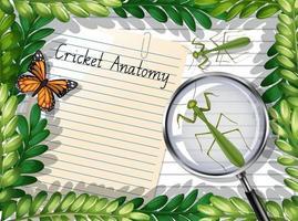 Vista superior de papel en blanco con hojas y elementos de mariposa y mantis vector