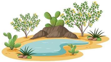 Planta de arbusto de creosota en desierto salvaje sobre fondo blanco.