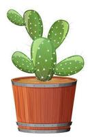 Prickly Pear Cactus in a wooden pot on white background