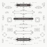 Vintage ornament frame flourishes vector