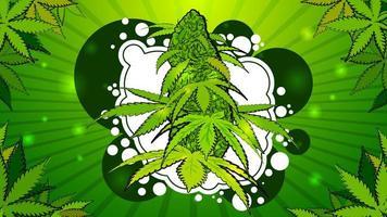 Cannabis flower in cartoon style vector
