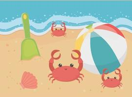 Fun summer vacation and beach composition