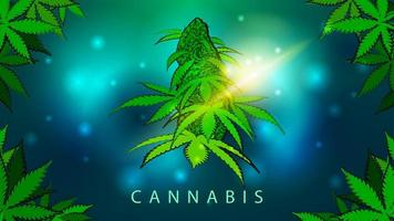 Green and blue bright illustration with cannabis flower