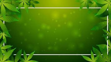 Green template with a frame of cannabis leaves