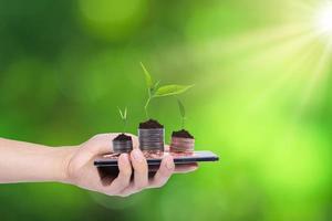 mano que sostiene el teléfono inteligente con monedas y plantas